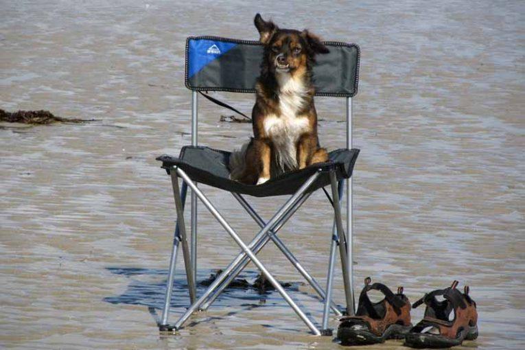 meilleur chaise de camping
