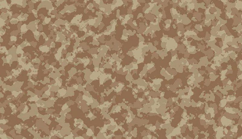 Meilleur filet camouflage 2020
